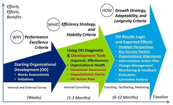 Organizational development strategy options
